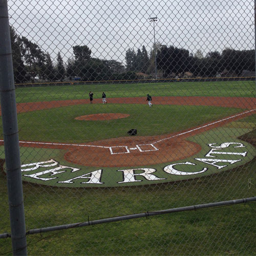 Artificial Turf 10' Home Plate Halo with Wings & Shock Pad