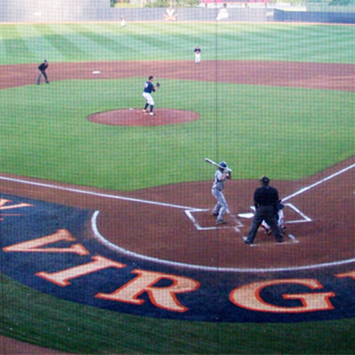 10' Custom Artificial Turf Home Plate Halo with Wings & Shock Pad