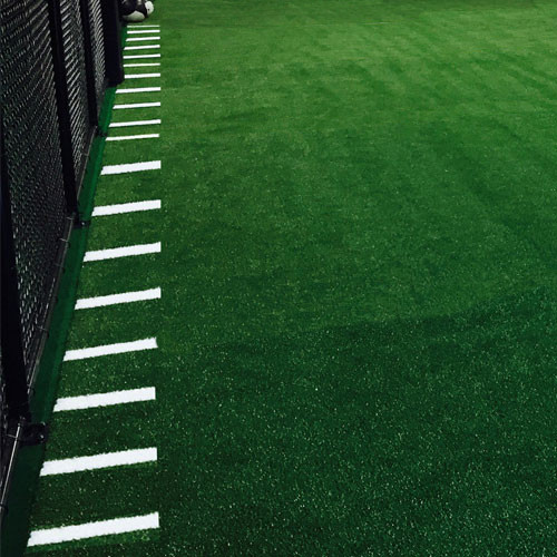 Agility Turf with Hashmarks