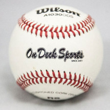Five Dozen Wilson A1030B Bucket Raised Seam High School Practice Baseballs with On Deck Sports Ball Bucket