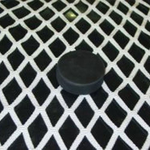 "Regulation Replacement Hockey Net (40"" Base)"
