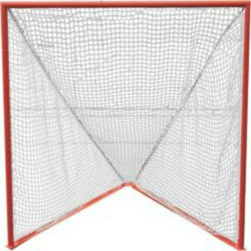 1 Pro Lacrosse Goal (netting included)