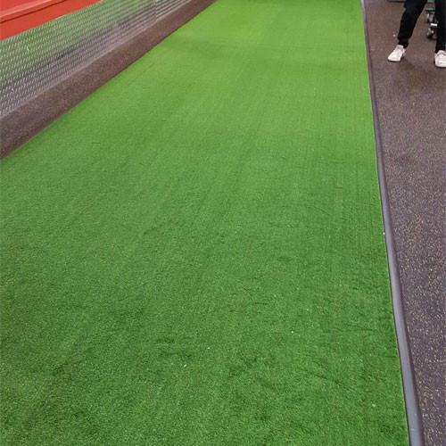 PM34 Carpet Style Turf