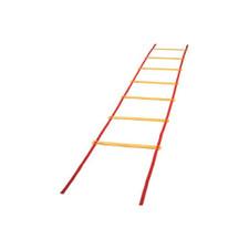 Economy Agility Ladder