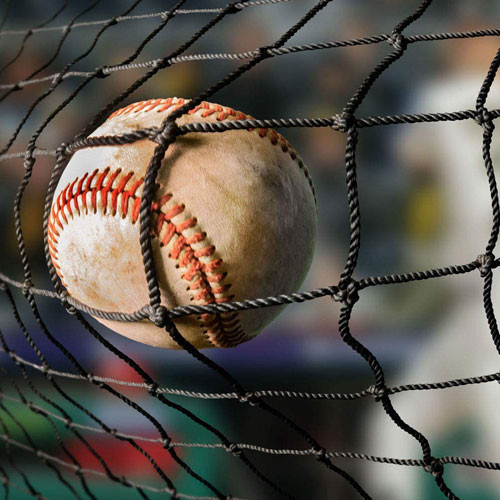#42 Baseball Backstop Netting