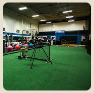 Shop On Deck Sports PM34 Batting Cage Artificial Turf