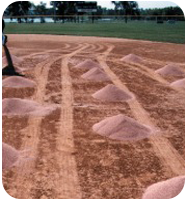 Field Preparation and Conditioners and Field Dirt for Baseball and Softball Fields from On Deck Sports