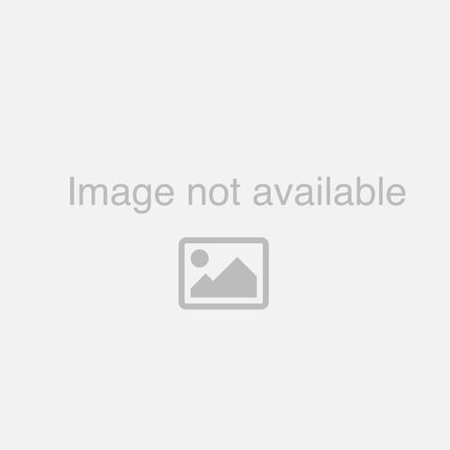 Trainer/Rebounder Goal